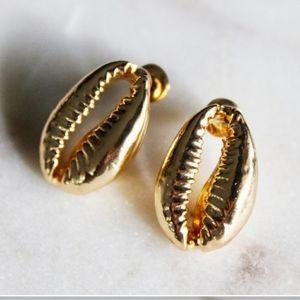 New Golden Cowrie Stud Earrings